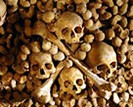 Aeon Tours: Paris Catacombs