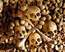 Aeon Tours: Paris Catacombs